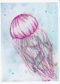 jellyfish pink